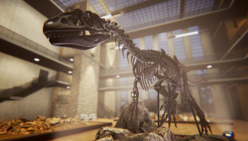 Dinosaur Fossil Hunter /materiały prasowe