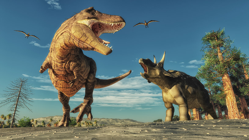 Dinozaury mogły regulować temperaturę swoich ciał /123RF/PICSEL