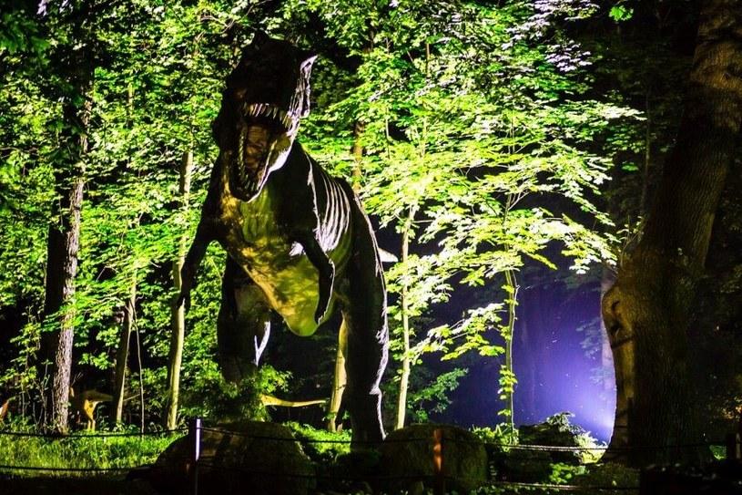 Dinozaury po zmroku budzą trwogę /materiały prasowe