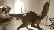 Dinozaury w Nowinach Wielkich