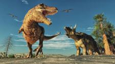 Dinozaury wcale nie były zimnokrwiste