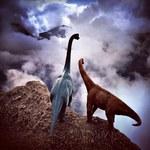 Dinozaury wciąż żyją! – zdjęcia