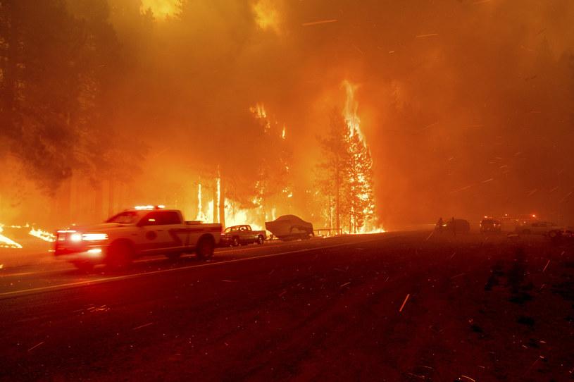 """""""Dixie"""" to największy pożar w USA w tym roku /FR34727 AP/Associated Press /East News"""