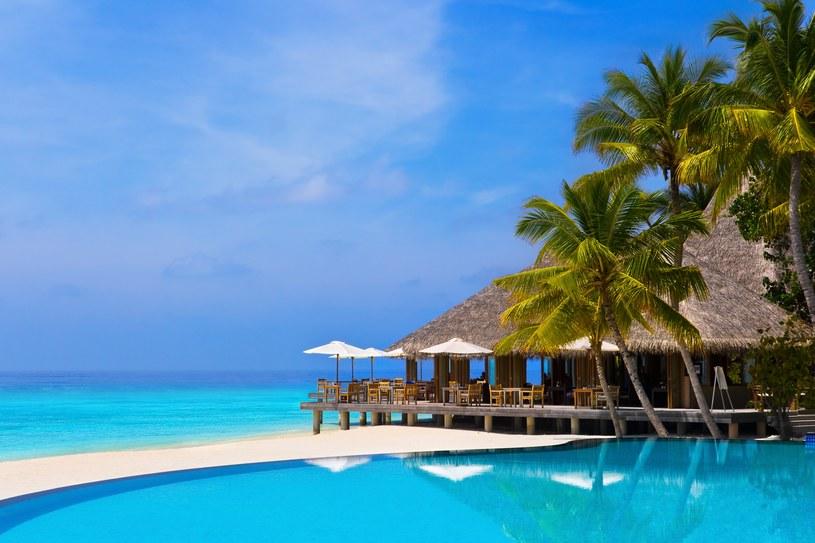 Dla nurka wizyta w tym podwodnym raju to prawie jak pielgrzymka, a świat pod wodą jest na Malediwach zupełnym przeciwieństwem tego, co na powierzchni - kipi życiem /123RF/PICSEL