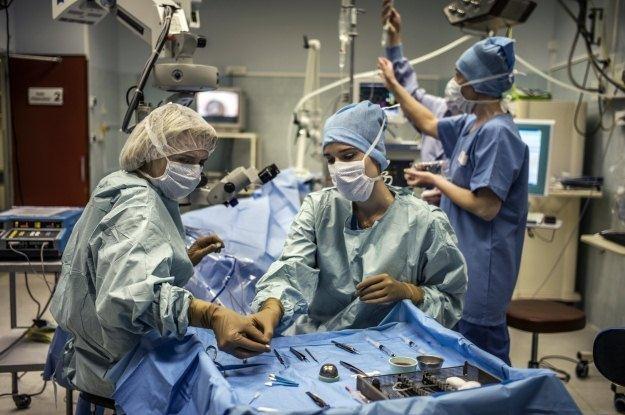 Dla transplantologów każdy organ jest na wagę złota /AFP