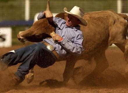Dla zainteresowanych: główną atrakcją miasta jest coroczne rodeo. Na zdjęciu: zawody z 2002 roku /Getty Images/Flash Press Media