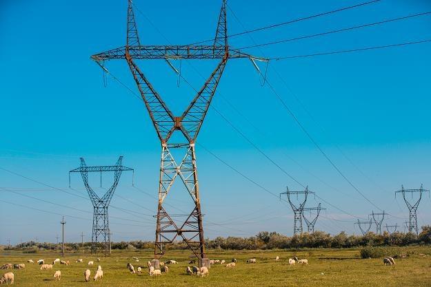 Dlaczego ceny energii elektrycznej w Polsce pójdą w górę? /©123RF/PICSEL