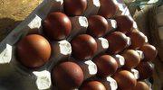 Dlaczego dawniej nie jadano jajek?
