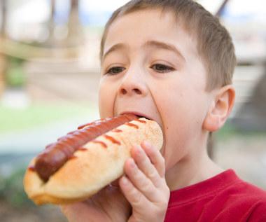 Dlaczego dzieci nie powinny jeść hot-dogów?