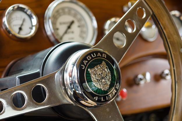 Dlaczego Jaguar wybrał Słowację? /©123RF/PICSEL