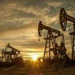 Dlaczego narasta frustracja wśród niektórych inwestorów na rynku ropy