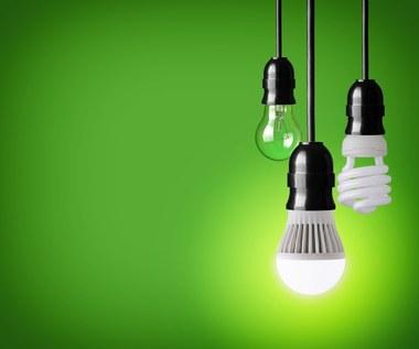 Dlaczego nie warto używać żarówek energooszczędnych?