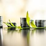 Dlaczego państwo emituje obligacje i czy warto wykorzystać je przy oszczędzaniu?