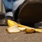 Dlaczego przewracamy się na skórce od banana? Tegoroczne Ig Noble przyznane