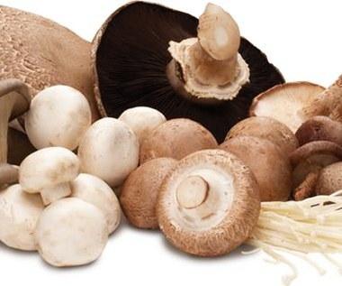Dlaczego warto jeść grzyby?