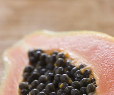 Dlaczego warto jeść nasiona papai?