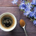 Dlaczego warto pić kawę z cykorii?