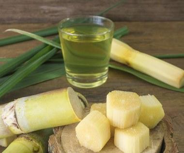 Dlaczego warto pić sok z trzciny cukrowej?