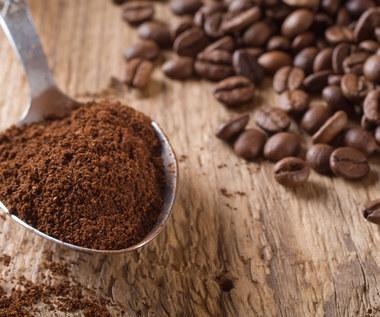 Dlaczego warto wkładać fusy z kawy do lodówki?