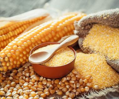 Dlaczego warto zastąpić mąkę pszenną mąką kukurydzianą