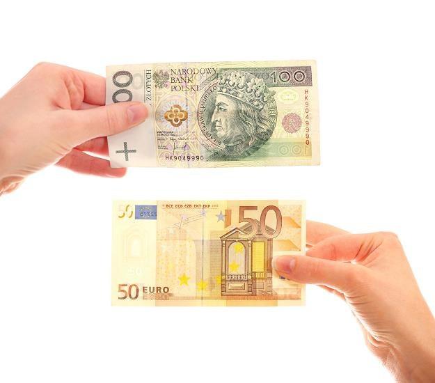 Dlaczego z wprowadzeniem euro nie warto się spieszyć? /©123RF/PICSEL