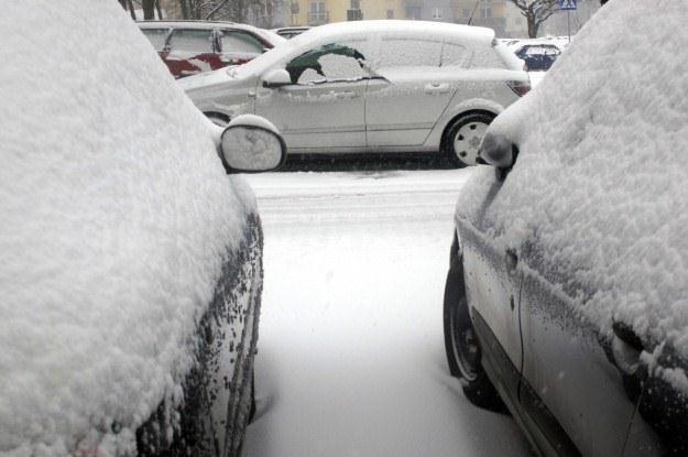 Długa zima to wymierne straty /PAP
