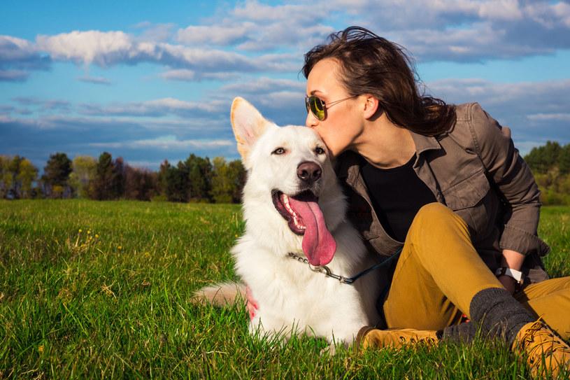 Długie spacery z psem wpłyną korzystnie na zdrowie /123RF/PICSEL