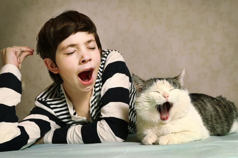 Długo tłumaczyłam synkowi, że zwierzętami trzeba się opiekować nie tylko wtedy, kiedy są słodkie i malutkie, ale i kiedy są stare i chore /123RF/PICSEL