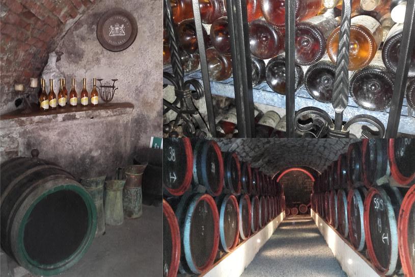 Dni Otwartych Piwnic to wyjątkowa okazja do zwiedzania miejsc na codzień niedostępnego dla turystów /123RF/PICSEL