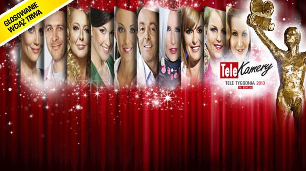 Do 28 lutego można głosować w plebiscycie Telekamer 2013 /  /Tele Tydzień