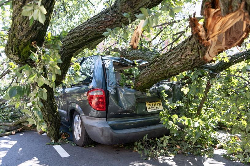 Do 46 wzrosła liczba ofiar śmiertelnych tornad i powodzi po huraganie Ida /ANGEL COLMENARES  /PAP/EPA