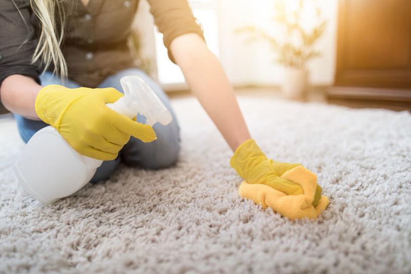 Do czyszczenia dywanu przydadzą się najprostsze akcesoria /123RF/PICSEL