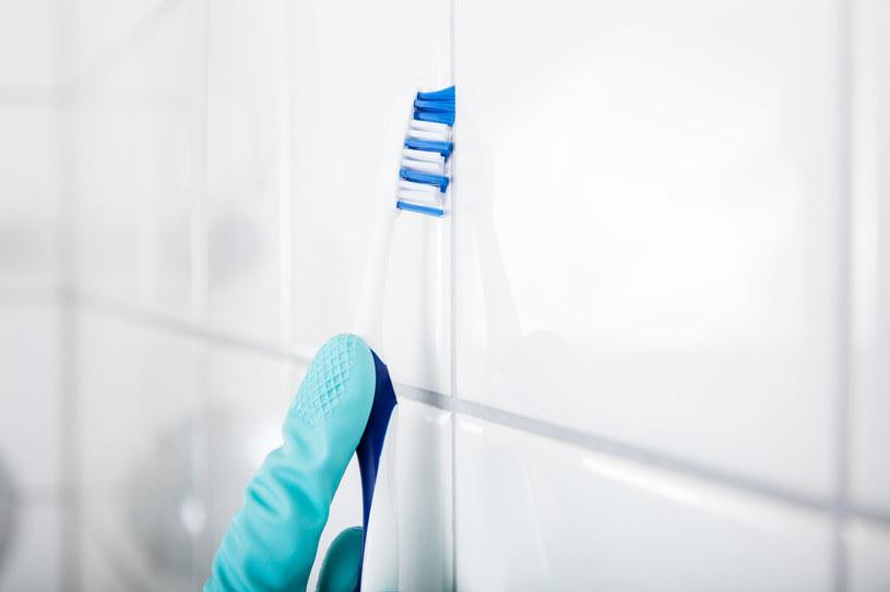 Do czyszczenia fug można wykorzystać szczoteczkę do zębów /123RF/PICSEL