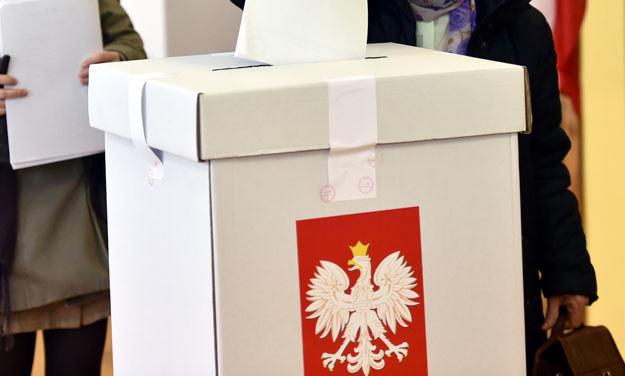 Do incydentu doszło we Włocławku (zdjęcie ilustracyjne) /Jacek Bednarczyk /PAP