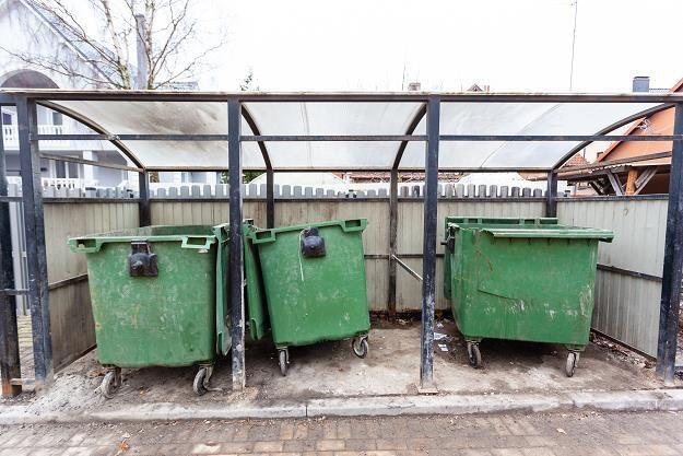 Do końca 2020 roku połowa odpadów musi być kierowanych do recyklingu /©123RF/PICSEL