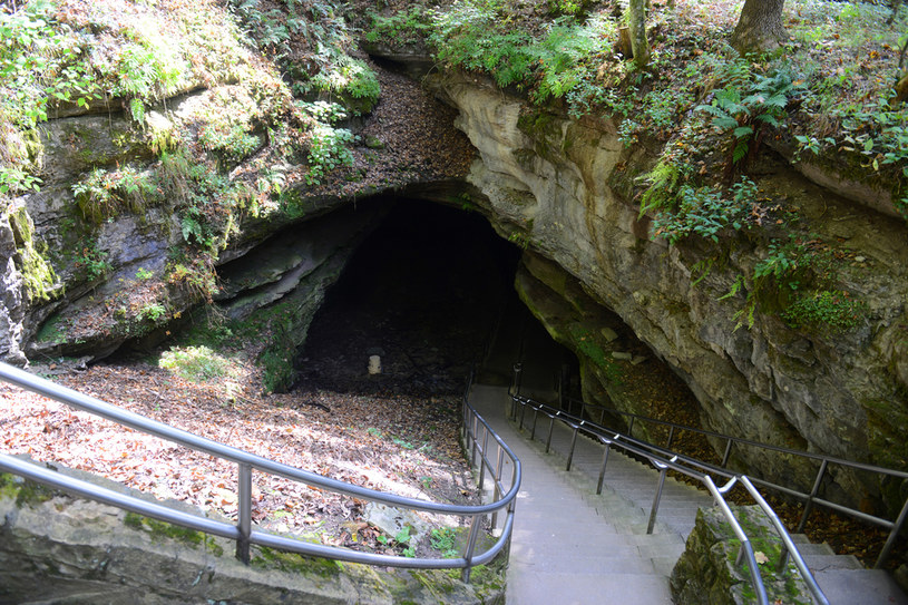 Do największej jaskini świata nie wolno wprowadzać wózków dziecięcych /Picsel /123RF/PICSEL