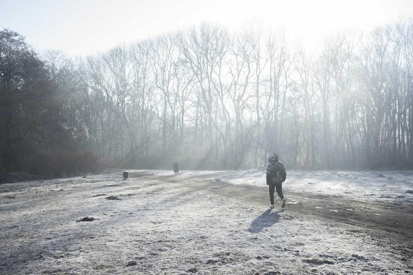 Do Polski napływa arktyczne powietrze /Dawid Tatarkiewicz/EAST NEWS /East News