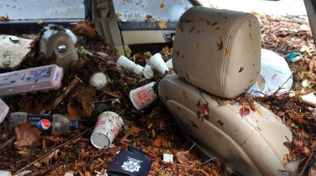 Do Polski trafiają z USA nawet mocno uszkodzone samochody. /Shutterstock