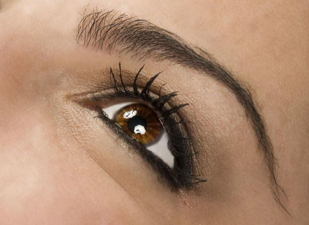 Do poprawy kształtu łuku brwiowego przyda się cień zbliżony do koloru włosków /123RF/PICSEL