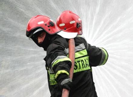 Do pożaru doszło ok. godz. 3 rano w północnej części Sosnowca/fot. T. Zieliński /Agencja SE/East News