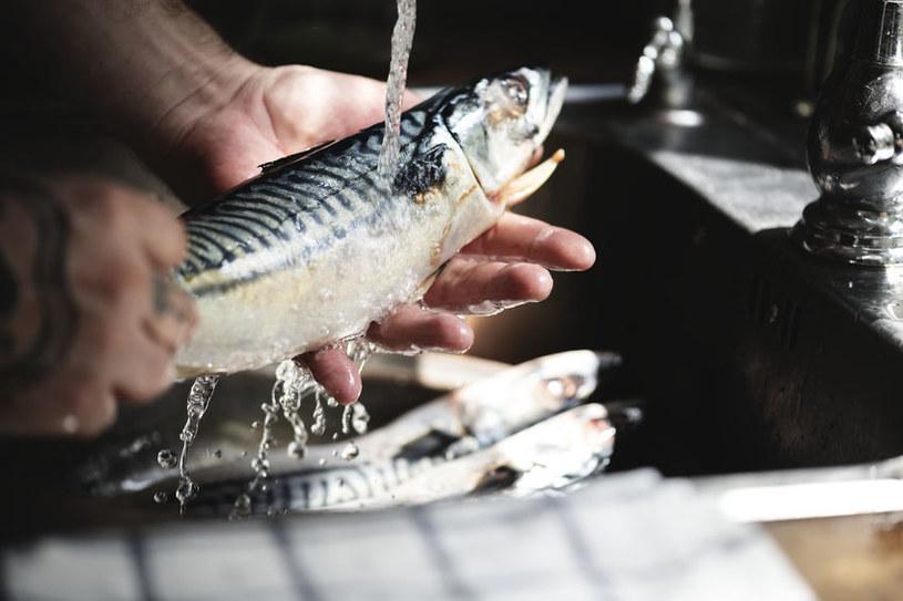 Do przygotowania wywaru z ryby nadaje się większość jej części /123RF/PICSEL