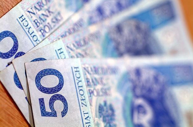 Do rekordu słabości naszej waluty jeszcze daleko /© Bauer