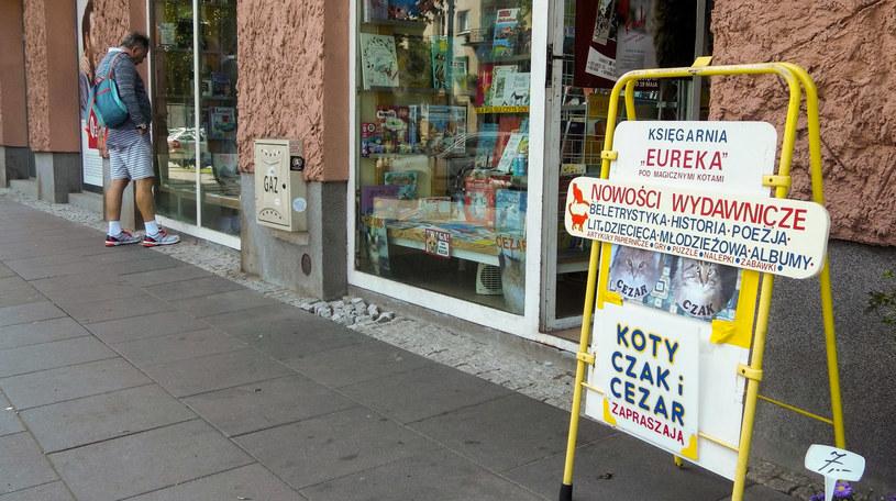 Do tej księgarni zapraszają koty /Styl.pl