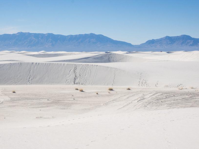 Do tragedii doszło w White Sands National Monument w Nowym Meksyku /123RF/PICSEL