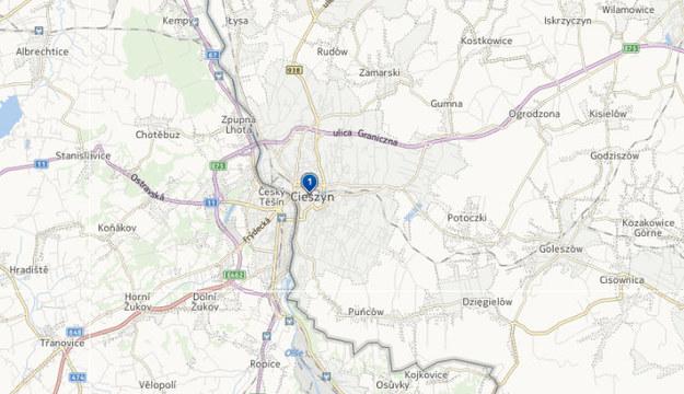 Do wypadku doszło w Cieszynie. /Map24.interia.pl