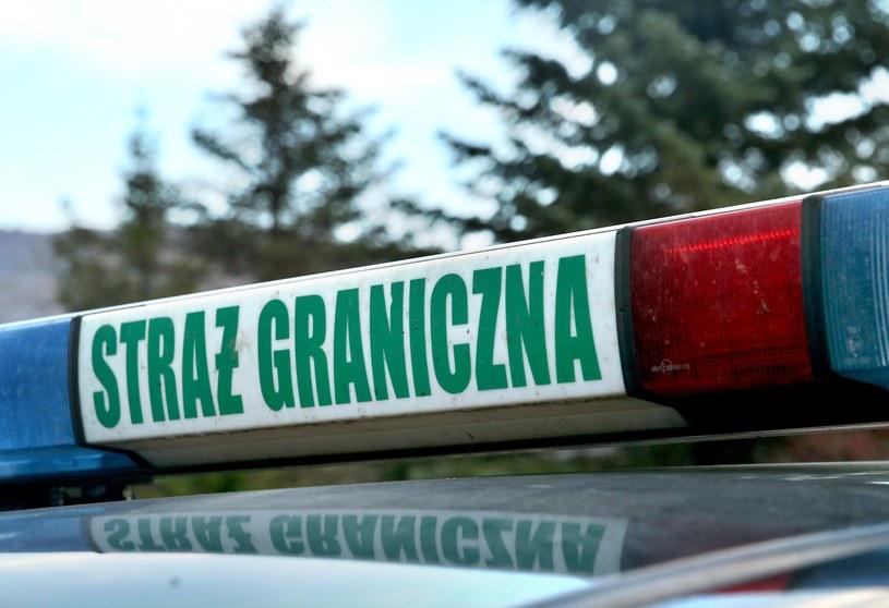 Do zdarzenia doszło w sobotę po południu w Lubaczowie; zdj. ilustracyjne /Damian Klamka /East News