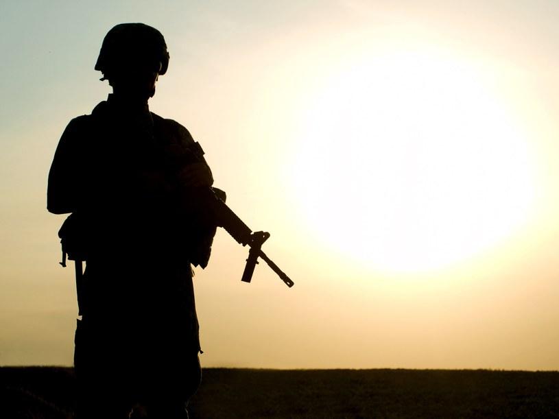 """Do złodziejskich metod """"na wnuczka"""" i """"na policjanta"""" dołączyła metoda """"na żołnierza amerykańskiego"""" /123RF/PICSEL"""
