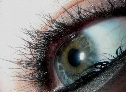 Dobrą kredką z łatwością zrobimy efektowny makijaż oczu /Świat konsumenta