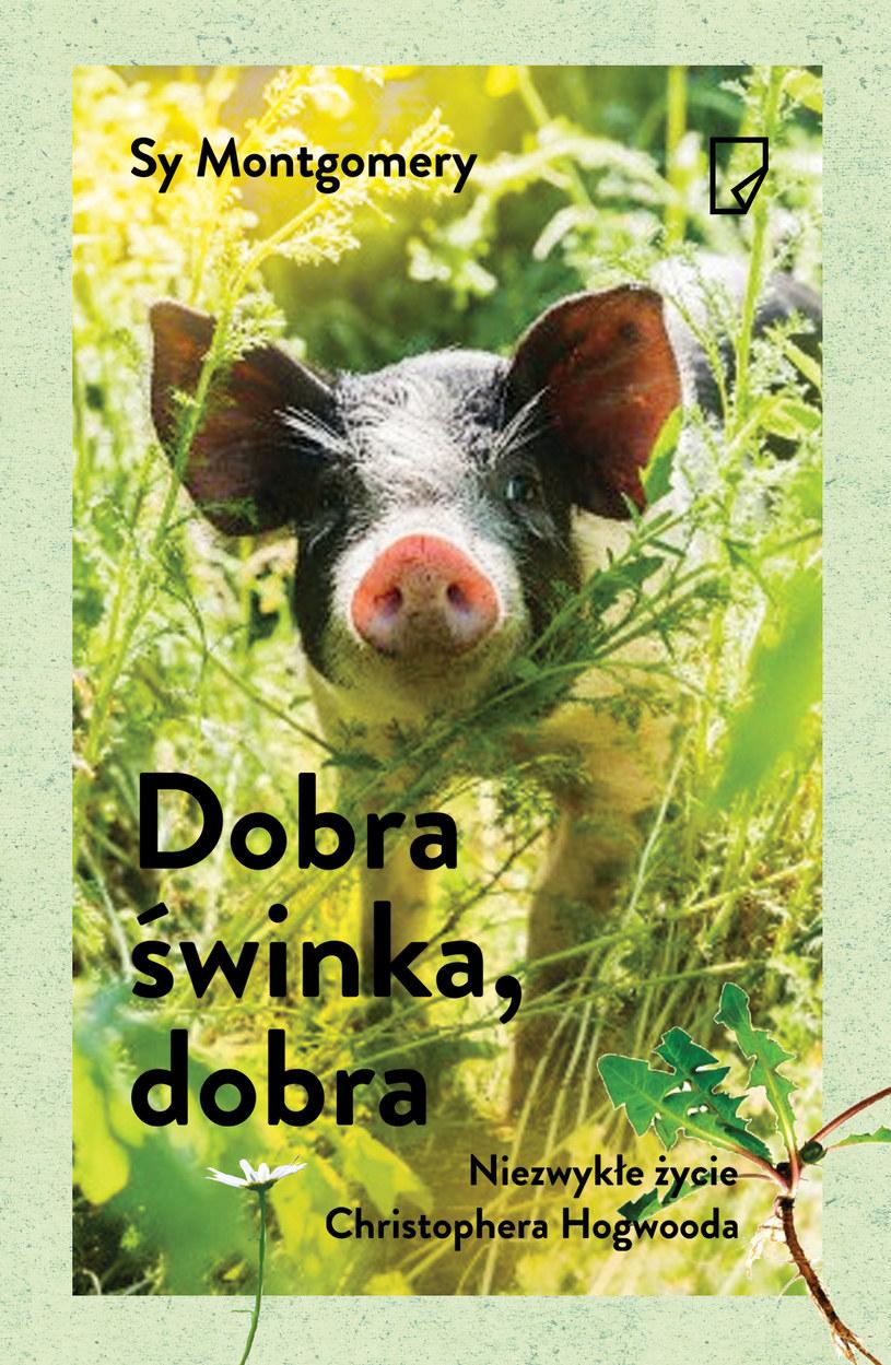 Dobra świnka, dobra. Niezwykłe życie Christophera Hogwooda /Styl.pl/materiały prasowe
