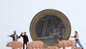 Dochody rolników podwoiły się po wejściu Polski do UE